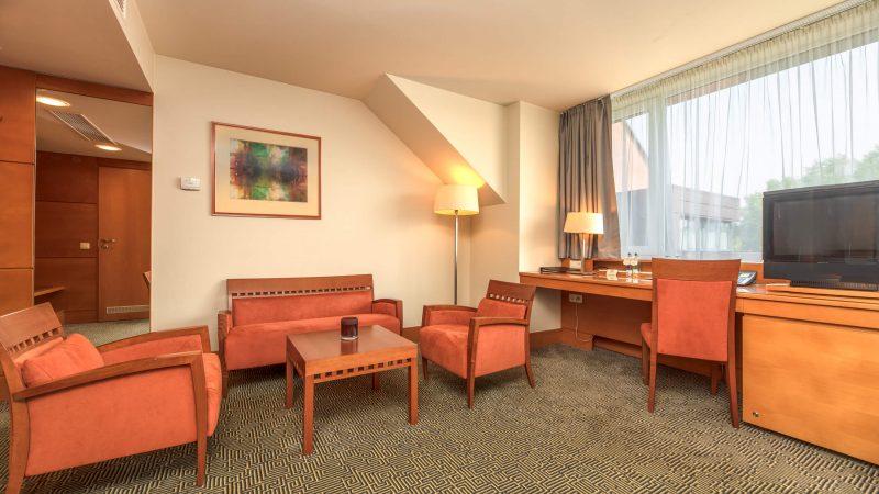Viešbutis VANAGUPĖ Verslo klasės kambarys [3]